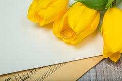 Tulipani e fedi nuziali gialli Fotografia Stock Libera da Diritti