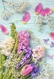 Tulipani e fiori del giacinto fotografia stock libera da diritti
