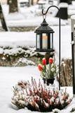 Tulipani e lanterna rossi con la candela alla tomba coperta di neve nell'inverno immagini stock libere da diritti