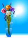 Tulipani e lavanda delle rose in un cielo soleggiato del onv del vaso Fotografie Stock