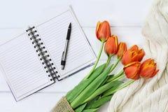 Tulipani e libro aperto Fotografie Stock Libere da Diritti