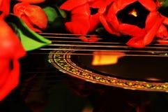 Tulipani e musica Fotografia Stock Libera da Diritti