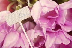 Tulipani e nota viola con amore di parola immagine stock libera da diritti