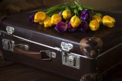 Tulipani e una vecchia valigia Fotografie Stock