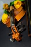 Tulipani e violino Fotografia Stock