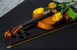Tulipani e violino Fotografia Stock Libera da Diritti