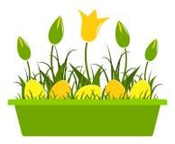 Tulipani ed uova di Pasqua Fotografia Stock
