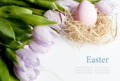 Tulipani ed uovo di Pasqua Fotografia Stock Libera da Diritti