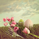 Tulipani freschi del taglio con le uova nell'erba alta Fotografia Stock Libera da Diritti