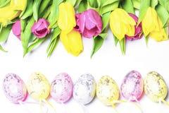 Tulipani freschi su un fondo bianco con le uova di Pasqua colorate Pasqua felice immagine stock libera da diritti