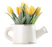 Tulipani gialli artificiali isolati sui precedenti bianchi Fotografia Stock Libera da Diritti