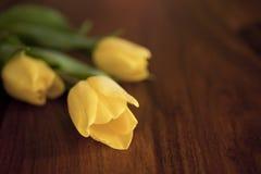 Tulipani gialli che si trovano sulla tavola Fotografia Stock