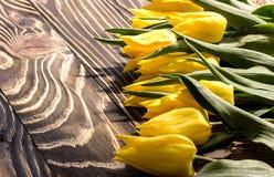 Tulipani gialli su un bordo di legno Fotografia Stock
