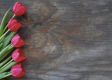 Tulipani graziosi su una vecchia priorità bassa di legno Immagini Stock