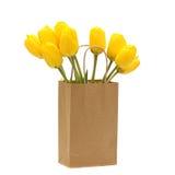 Tulipani isolati su priorità bassa bianca Immagine Stock