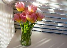 Tulipani rosa davanti alla finestra con i ciechi e la tenda fotografia stock libera da diritti