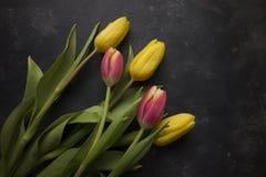 Tulipani rosa e gialli Fotografia Stock