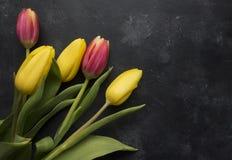 Tulipani rosa e gialli Fotografie Stock Libere da Diritti