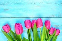 Tulipani rosa su fondo blu di legno Festa di concezione, l'8 marzo, giorno del ` s della madre Spazio piano della copia e di disp Fotografie Stock Libere da Diritti