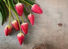 Tulipani rosa su fondo di legno Immagini Stock Libere da Diritti
