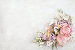 Tulipani rosa sul fondo dei fiori della molla fotografia stock