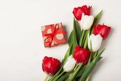 Tulipani rossi e bianchi Fotografia Stock Libera da Diritti