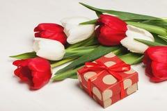 Tulipani rossi e bianchi Immagine Stock