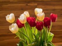 Tulipani rossi e bianchi davanti a legno Fotografie Stock