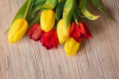 Tulipani rossi e gialli su una tavola di legno Immagine Stock