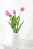 Tulipani nella sala Fotografie Stock Libere da Diritti