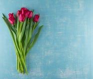 Tulipani rossi su Aqua Background stagionata fotografia stock libera da diritti