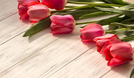 Tulipani su fondo di legno Fotografia Stock