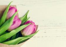 Tulipani su fondo elegante misero bianco Fotografia Stock