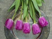 Tulipani su un fondo del vassoio per il giorno di madri, invito di nozze, Fotografia Stock