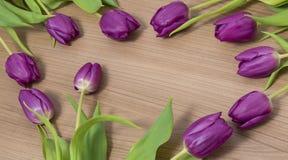 Tulipani su un fondo di legno Immagini Stock