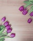 Tulipani su un fondo di legno Immagine Stock Libera da Diritti