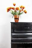 Tulipani sul piano Immagini Stock Libere da Diritti