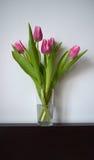 Tulipani in un vaso Fotografia Stock