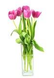 Tulipani in un vaso Immagini Stock