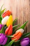 Tulipani variopinti su vecchio fondo di legno Fotografie Stock