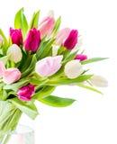 Tulipani in vaso Immagine Stock Libera da Diritti