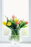 Tulipani in vaso di vetro Fotografie Stock Libere da Diritti