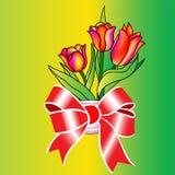 Tulipano Fotografia Stock