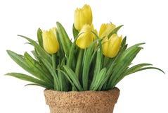 Tulipano artificiale Fotografia Stock