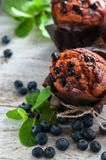 Tulipano con i mirtilli ed i frutti differenti della foresta, lamponi, fragole Viste differenti fotografia stock
