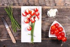 Tulipano creativo immagine stock