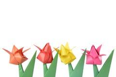 Tulipano di origami isolato sopra bianco Immagine Stock