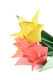 Tulipano di origami isolato sopra bianco Fotografia Stock