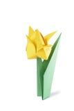 Tulipano di origami isolato sopra bianco Fotografie Stock