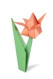 Tulipano di origami isolato sopra bianco Immagini Stock